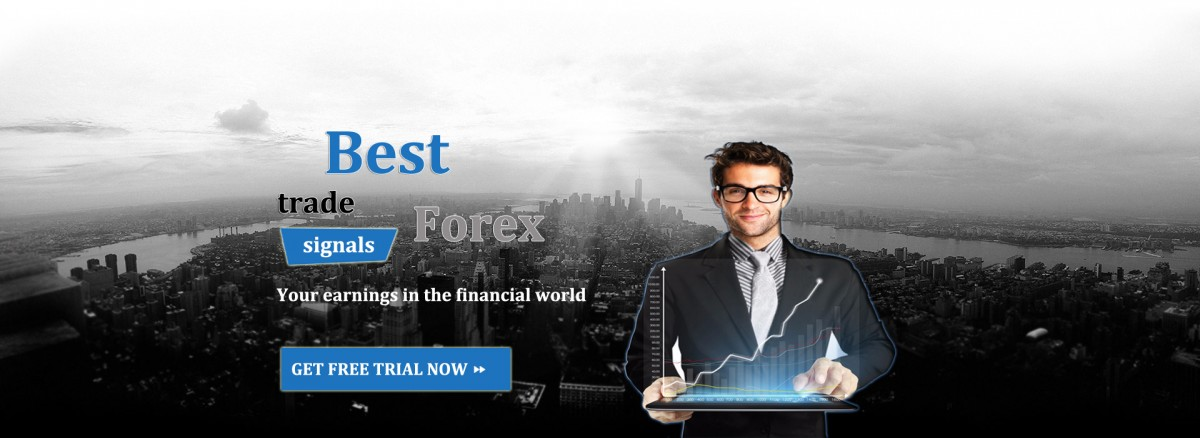 Best forex signal site